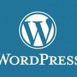 【WordPress】WPtouchプラグインを利用した場合、特定のURLのみPCサイトを表示させる方法。